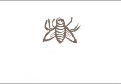 Илья Лемешкин. «Муха Ф. Скорины танцует дансе»: (ре)анимация мухи или долой русские подковы